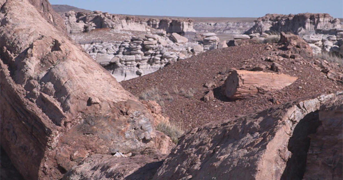 On The Trail Petrified Forest National Park Cbs News