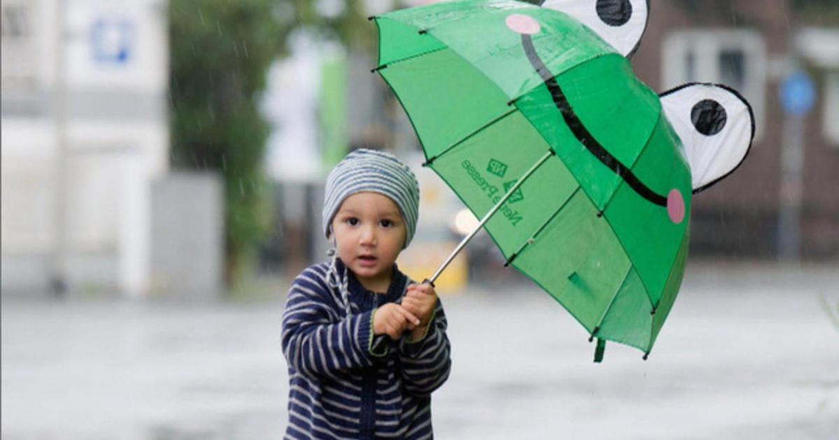 Small Wonders:  The umbrella