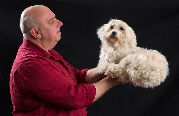 When a beloved pet dies