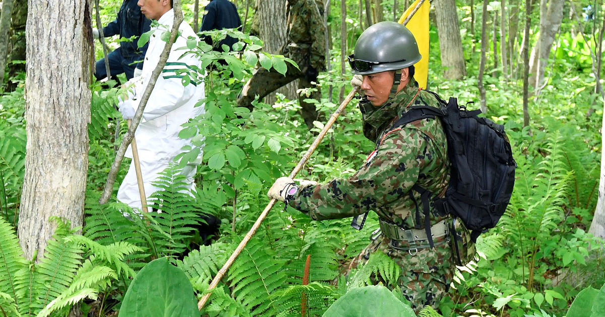 Search for boy who vanished in Japanese forest enters Day 5