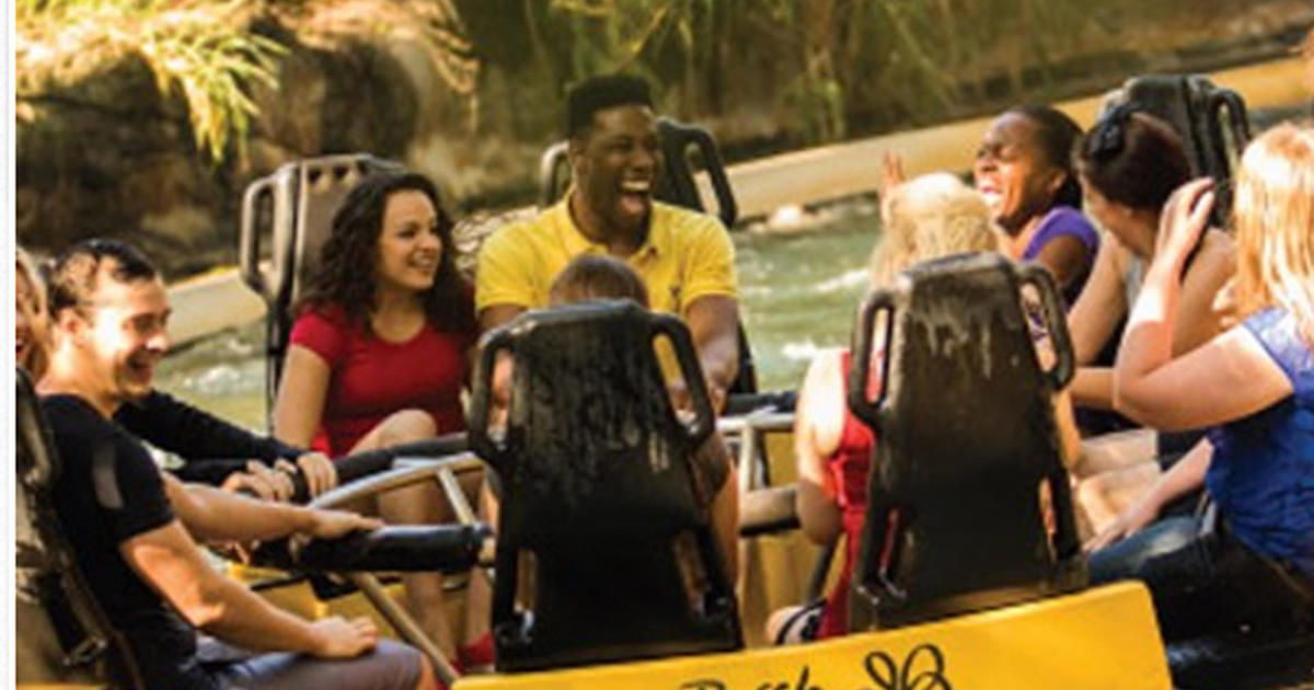 Busch Gardens In Tampa Shuts Congo River Rapids Ride After