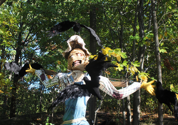 Spooky scarecrows come to life at New York Botanical Garden