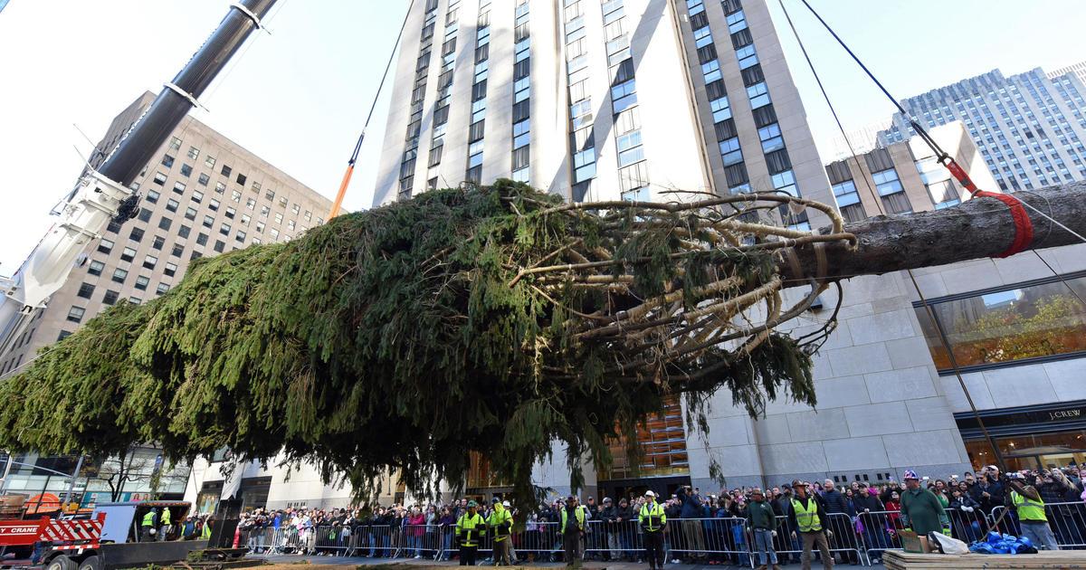 Rockefeller center christmas tree arrives in nyc cbs news for Weihnachtsbaum rockefeller center 2016