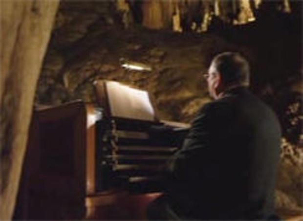 阿特拉斯 - 暗箱-stalacpipe器官-VA-244.jpg