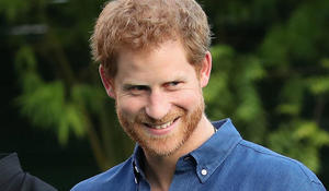 Prince Harry on the royals' future