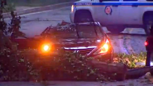 2017年8月3日,在马里兰州巴尔的摩县的暴风雨中,一辆树落在一辆汽车上后,工作人员工作。
