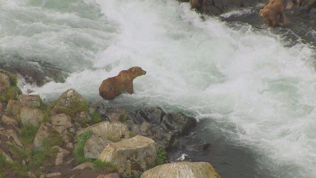 熊式,water.jpg