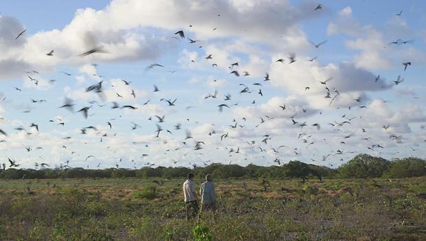 唤醒环礁国家野生动物避难所 - 康纳尔 - 奈顿 - 约翰 -  GILARDI-620.jpg