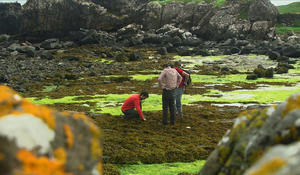 Isle of Skye a hotbed of dinosaur discoveries
