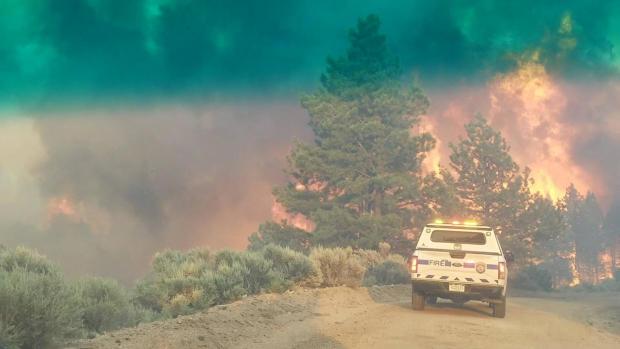 在努力控制Costilla县的Spring Creek火灾期间,火焰从紧急车辆附近的树线上升起