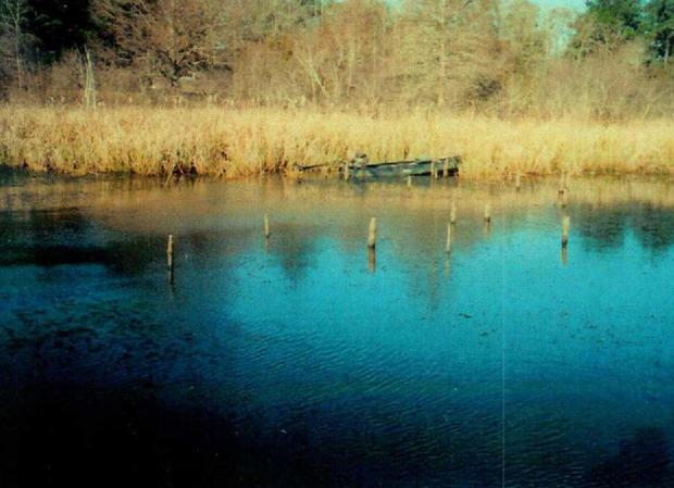 威廉姆斯船湖,seminole.jpg