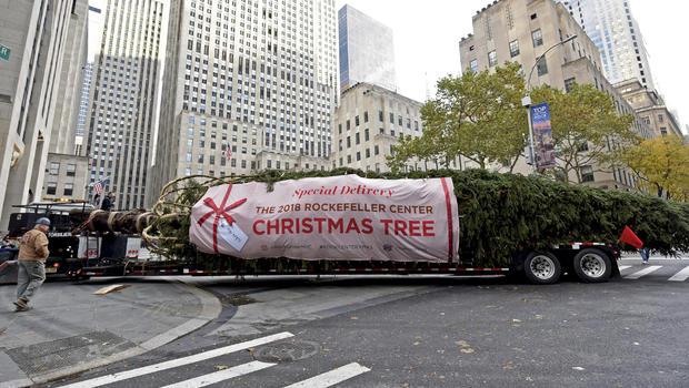 2018年洛克菲勒中心圣诞树抵达