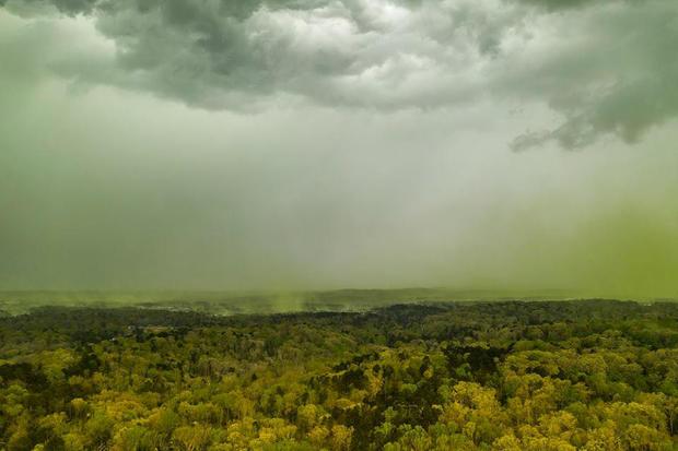 鸟瞰图显示北卡罗来纳州达勒姆受花粉影响地区的降雨量