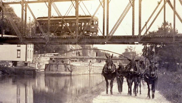 erie-canal-mules-at-lyons-620.jpg