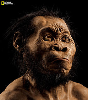 This March 2015 photo provided by National Geographic from their October 2015 issue shows a reconstruction of Homo naledi's face by paleoartist John Gurche at his studio in Trumansburg, N.Y. Scientists say fossils found deep in a South African cave revealed the new member of the human family tree