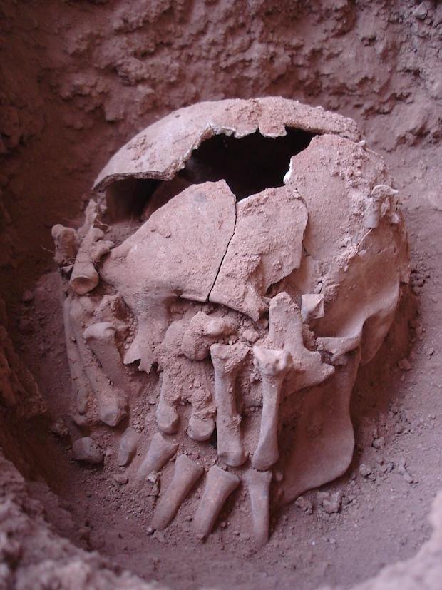 burial-26-in-2007-credits-danilo-bernardo.jpg