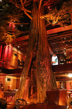 cliftons-cafeteria-redwood-244.jpg