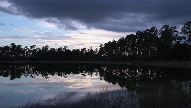everglades-national-park-scenic-620.jpg