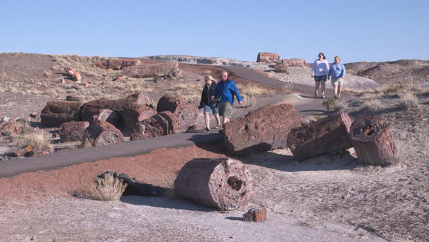 petrified-forest-national-park-visitors-620.jpg