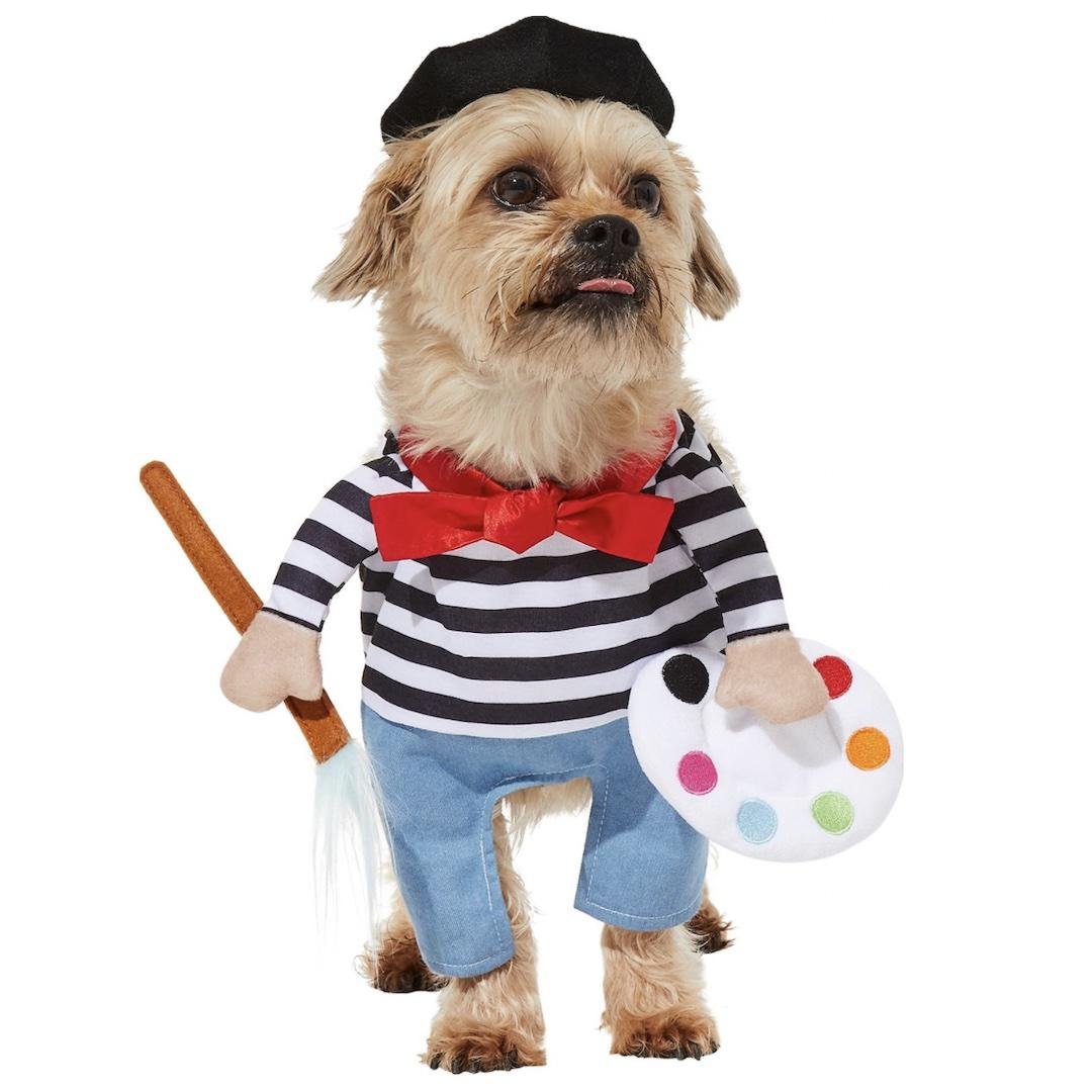Frisco French Artist Dog Costume