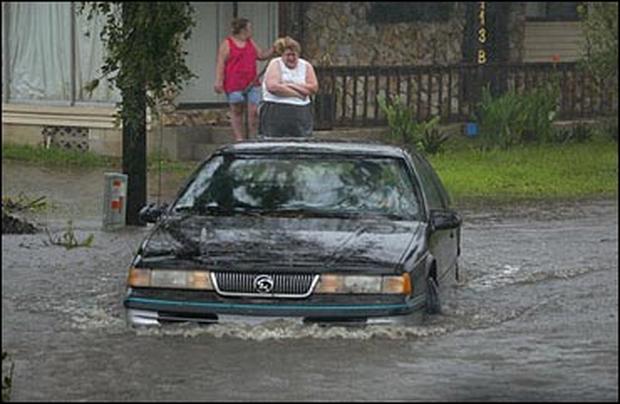 Gainesville Area