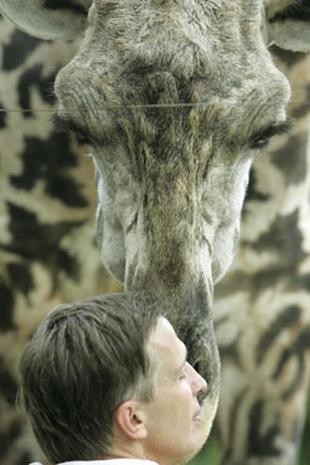 Animal World 2005