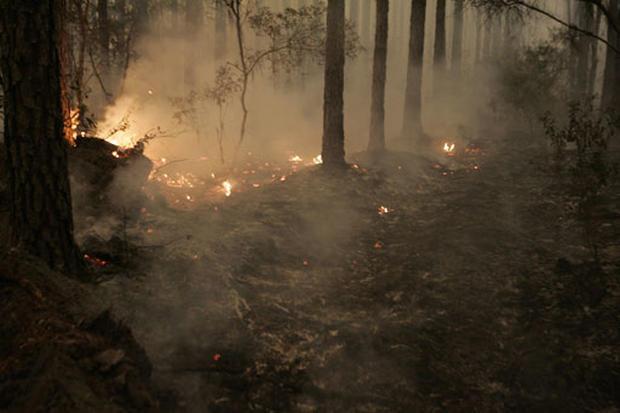 Fla.-Ga. State Line Blaze