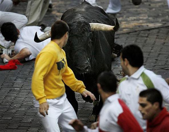 Bulls On The Run