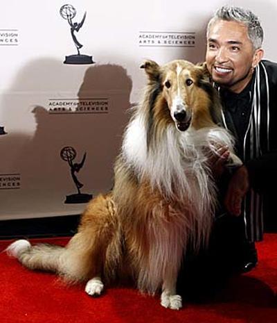 2008 Creative Arts Emmys