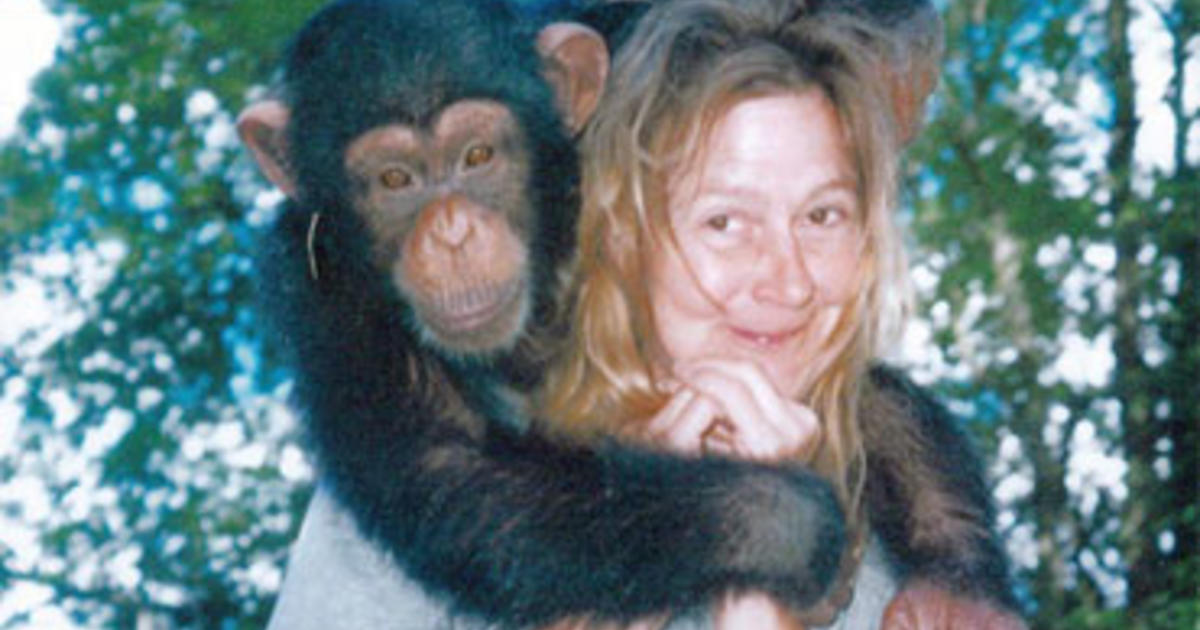 Girl gets fucked by monkey