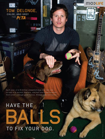 "Stars Support PETA's ""Spay Day"""