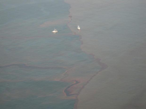 Gulf_Oil_crop_1.jpg
