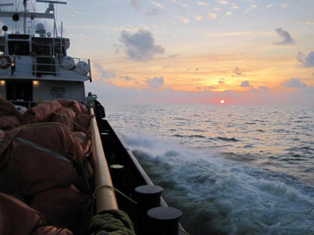 Gulf_Oil_crop_8.jpg
