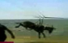 Flying Donkey