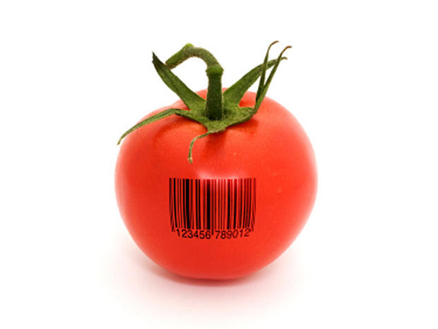 gm, genetically modified food