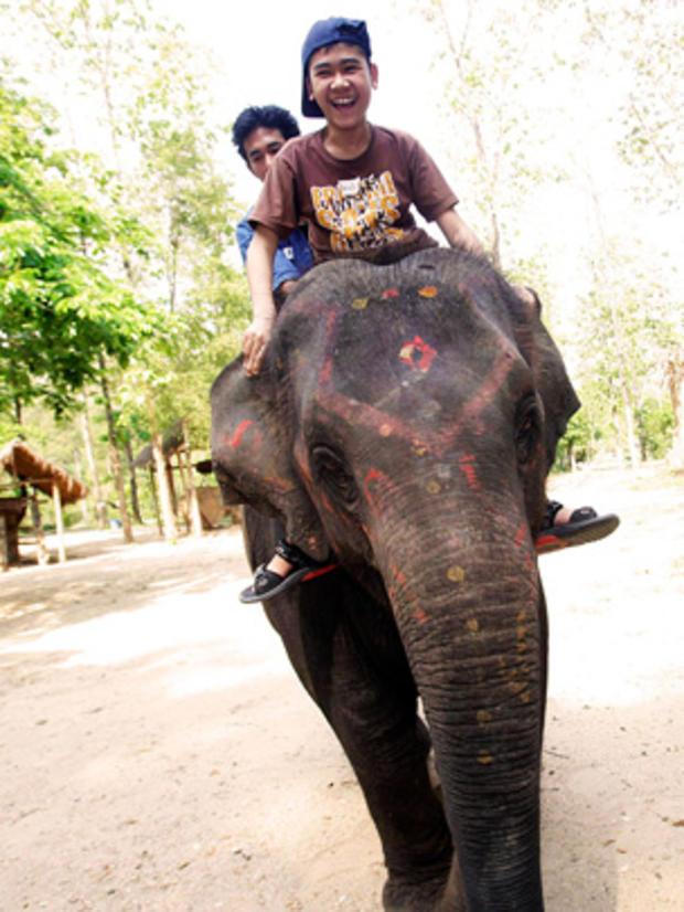 elephant-therapy8-AP110504098606.jpg