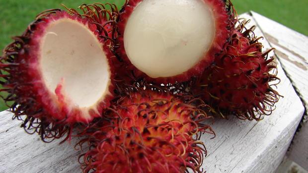 15 strange fruits and vegetables