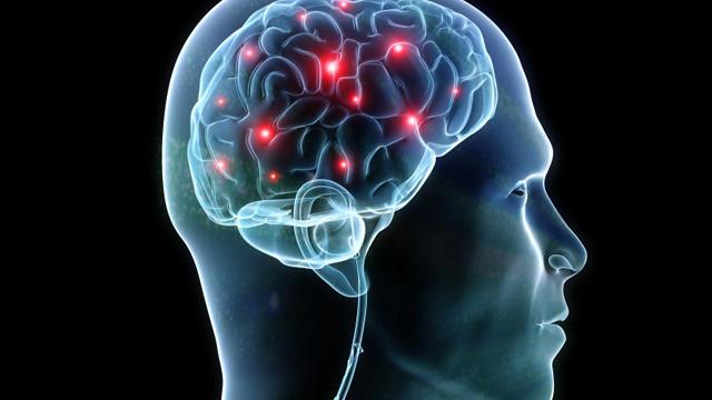 active-brain.jpg
