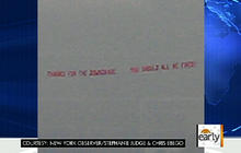 Woman flies banner to show outrage to Congress