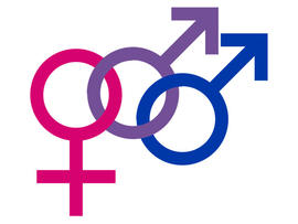 bisexuality, bi