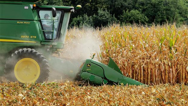 genetically modified crops debate Debate: should we genetically modify food many crops we eat today are the product of genetic modifications that happen in a lab, not in nature.