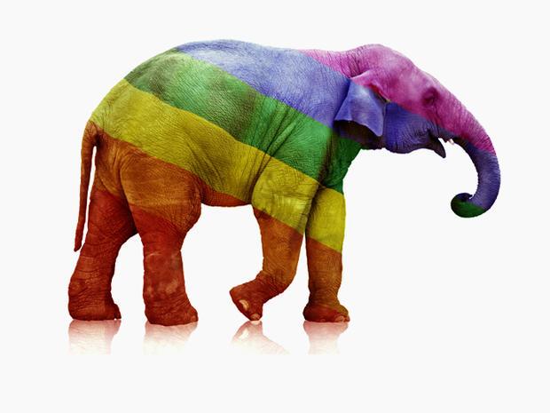 Gay Rights GOP Elephant