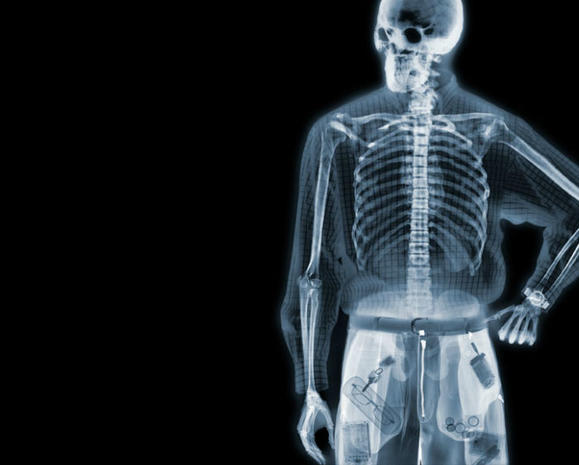 Amazing X-ray art reveals hidden beauty