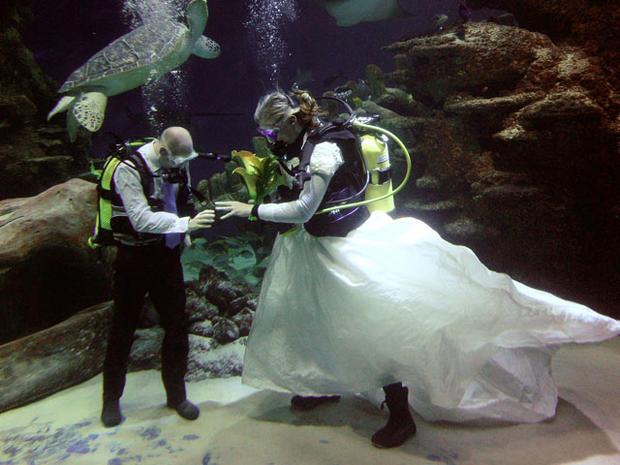 Wild and wacky weddings