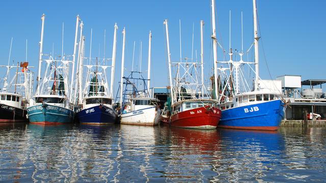 Gulf_boats_98873490.jpg