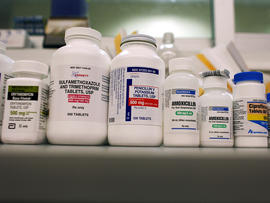 Bottles of antibiotics line a shelf at a Publix Supermarket pharmacy Aug. 7, 2007, in Miami.