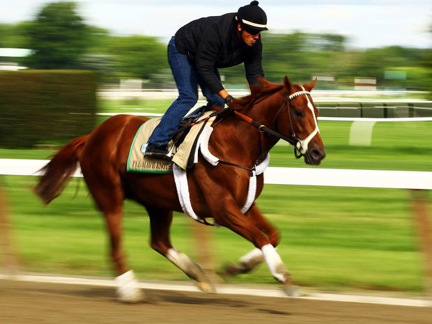 Triple Crown hopeful I'll Have Another gallops with exercise rider Jonny Garcia up during a morning workout at Belmont Park June 5, 2012 in Elmont, N.Y.