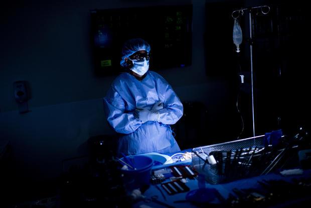 147206406-Kidney-026.jpg