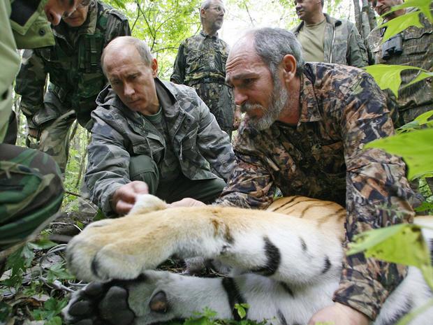 putin_tiger.JPG