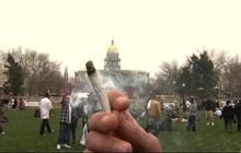 Colorado's Amendment 64 legalizes recreational marijuana use